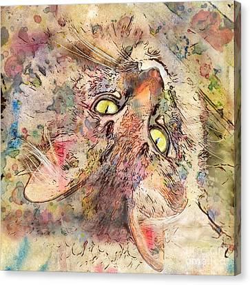 Kitty Fluffs Canvas Print by Marilyn Sholin