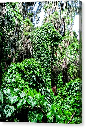 Kudzu Creature Canvas Print by Christy Usilton