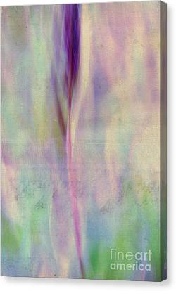 L Epi - S06-02ft01 Canvas Print by Variance Collections