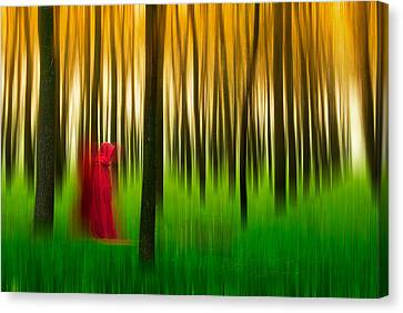 Lady In Red - 3 Canvas Print by Okan YILMAZ