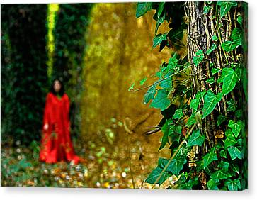 Lady In Red - 8 Canvas Print by Okan YILMAZ