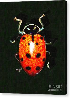 Ladybug Canvas Print by Wingsdomain Art and Photography