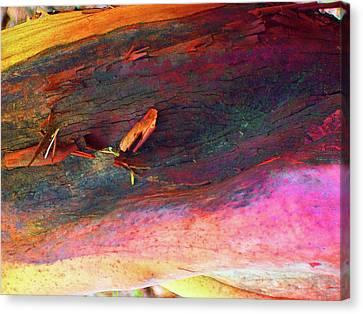 Canvas Print featuring the digital art Landing by Richard Laeton
