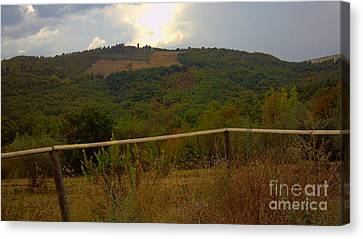 Landscape Greve In Chianti Canvas Print by Nettie Pena