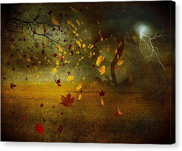 Late October Canvas Print by Svetlana Sewell