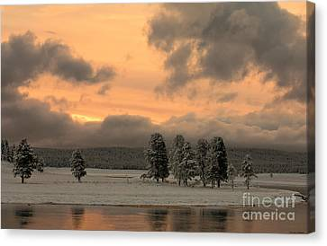 Late Spring Storm In Yellowstone Canvas Print by Sandra Bronstein