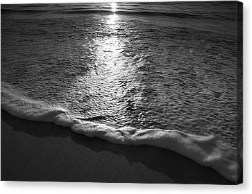 Leading Edge II Canvas Print by Steven Ainsworth