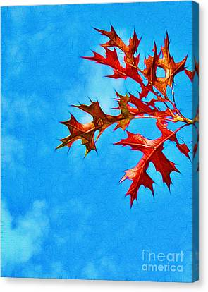 Leaves Against The Sky Canvas Print by Judi Bagwell