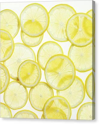 Lemon Slices Arranged In Pattern Canvas Print by Lauren Burke