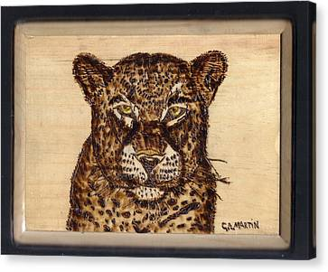 Leopard Canvas Print by Clarence Butch Martin