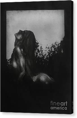 Liberation Canvas Print by Darko Mitrevski