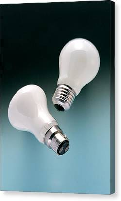 Light Bulb Fittings Canvas Print by Sheila Terry