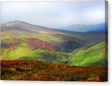 Light Over Wicklow Hills. Ireland Canvas Print by Jenny Rainbow