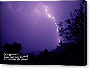 Lightning Over The Rogue Valley Canvas Print by Mick Anderson