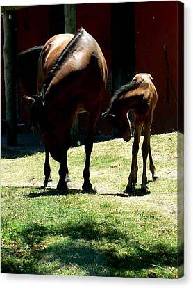 Like Mother Like Son Canvas Print by De Beall