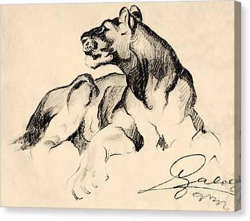 Lion Canvas Print by Odon Czintos