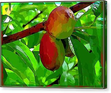 Little Peaches Canvas Print by Mindy Newman