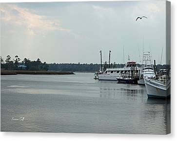 Little River Scenic Iv Canvas Print by Suzanne Gaff