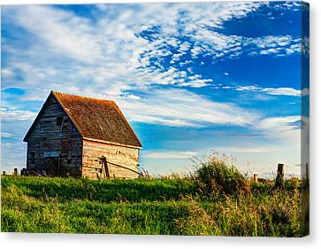 Little Shed On The Prairie Canvas Print by Matt Dobson