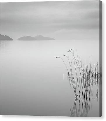 Loch Lomond Grass Canvas Print by Billy Currie Photography