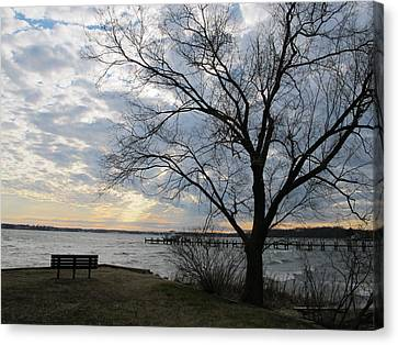 Lonely Bench At Dusk Canvas Print by Valia Bradshaw
