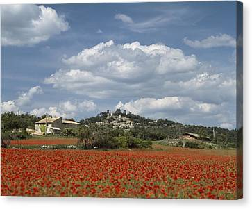 Looking Over A Field Of Red Poppies Canvas Print by Axiom Photographic