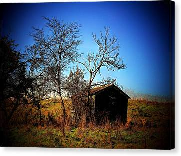 Lost Shed Canvas Print by Joyce Kimble Smith