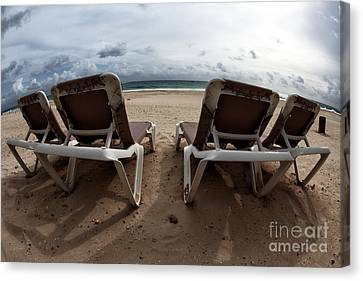 Lounging Canvas Print by John Rizzuto