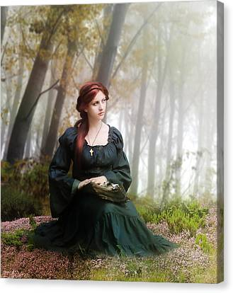 Lucid Contemplation Canvas Print by Mary Hood