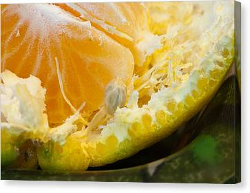 Macro Photo Of Orange Peel And Pips And Main Fleshy Part Canvas Print by Ashish Agarwal