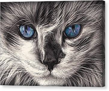 Mad Cat Canvas Print by Elena Kolotusha