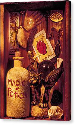 Magic Things Canvas Print by Garry Gay