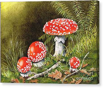 Magical Mushrooms Canvas Print by Val Stokes