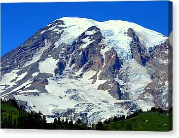 Majestic Mountain Canvas Print by Lynn Bawden