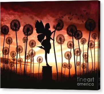Make A Wish Canvas Print by Julie Fain