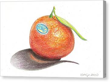 Mandarin Orange Canvas Print by Sean Paradise
