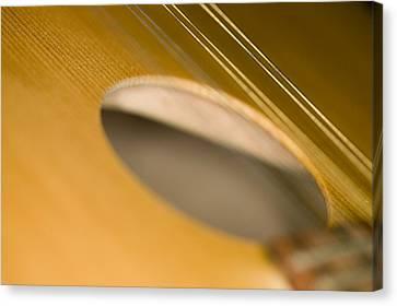 Mandolin Core Canvas Print by C Ribet