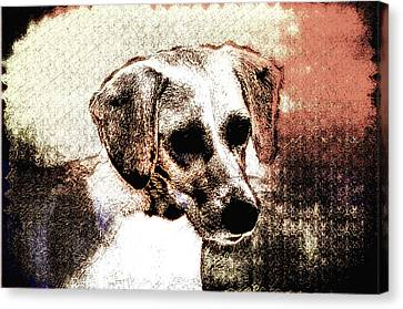 Mans Best Freind Canvas Print by Bill Cannon
