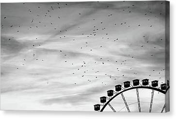 Many Birds Flying Over Giant Wheel In Berlin Canvas Print by Image by Ivo Berg (Crazy-Ivory)