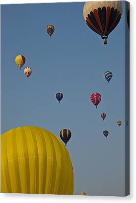 Many People Lift Off In Hot Air Canvas Print by Stacy Gold