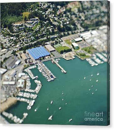 Marina And Coastal Community Canvas Print by Eddy Joaquim