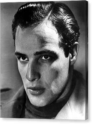 Marlon Brando, 1950s Canvas Print by Everett