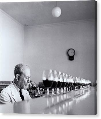 Mature Wine Tester With Row Of Glasses (b&w) Canvas Print by Hulton Archive