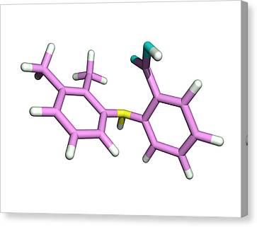 Mefenamic Acid Drug Molecule Canvas Print by Dr Tim Evans