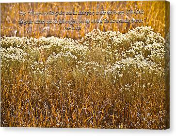 Men Are Like Grass Canvas Print by Carolyn Marshall