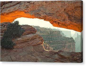 Mesa Arch Canvas Print by Andrew Soundarajan