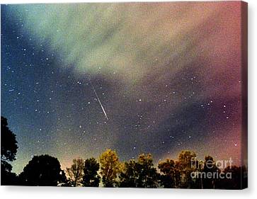 Meteor Perseid Meteor Shower Canvas Print by Thomas R Fletcher