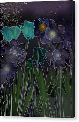 Midnight Daffodils Canvas Print by Heinz G Mielke