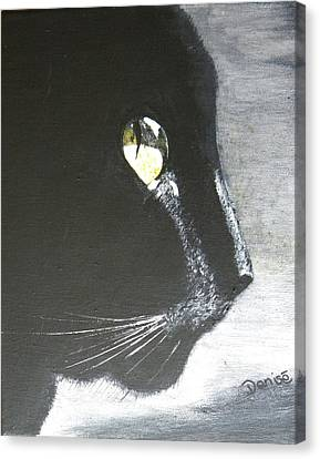 Midnight Prowler Canvas Print by Denise Hills