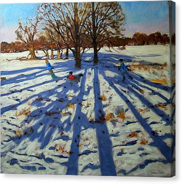 Midwinter Canvas Print by Andrew Macara